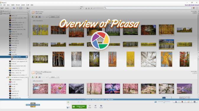 free download picasa