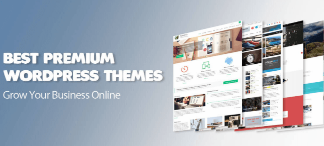 best premium wordpress themes