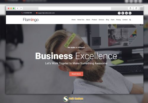 Flamingo WordPress Theme