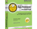 Spy Sweeper 2011