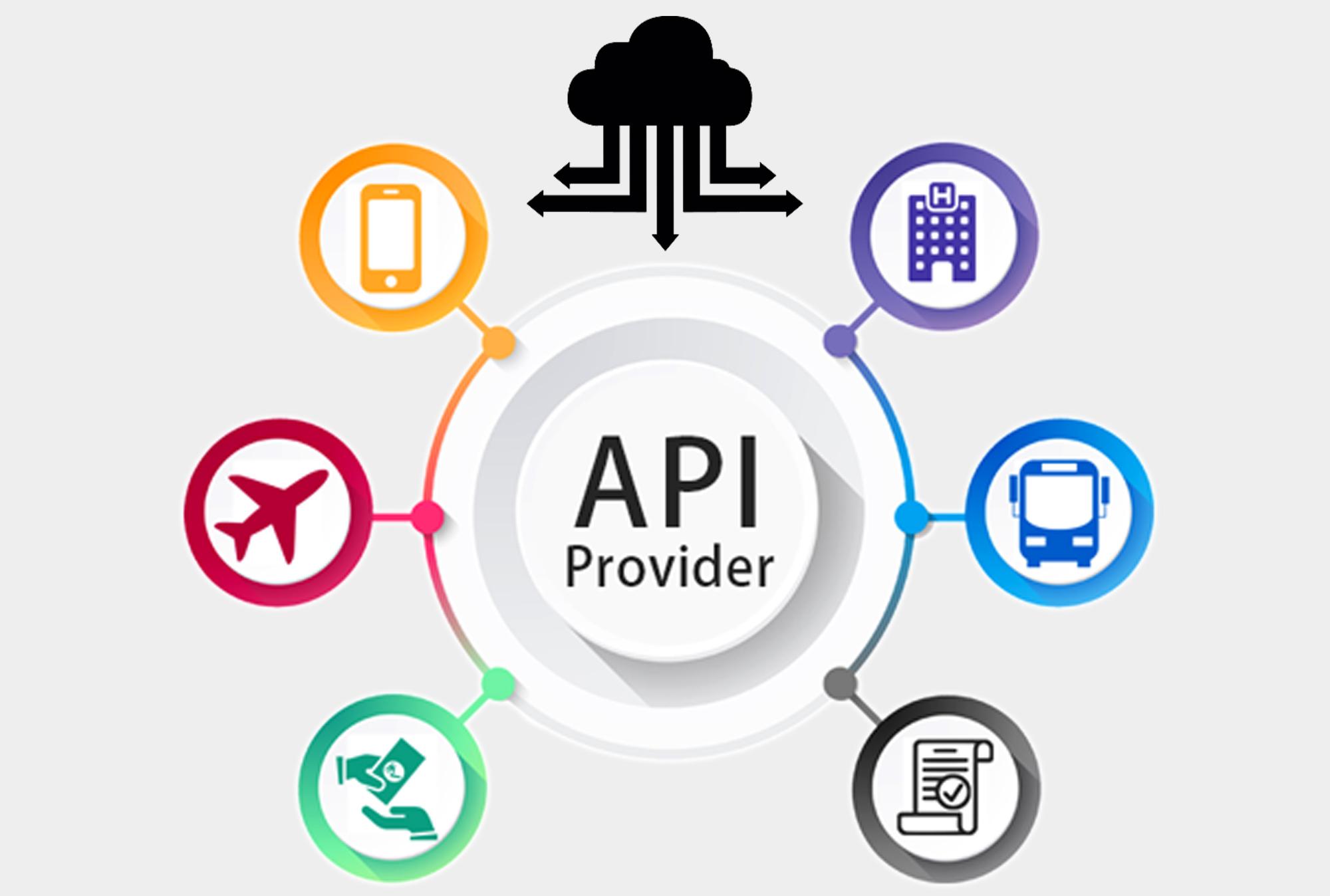 API Provider
