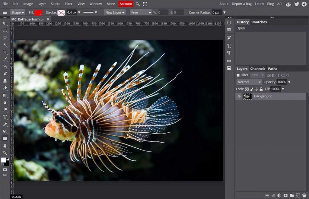 Photopea Best Online Editor